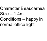 Character Beaucarnea Size – 1.4m  Conditions – happy in normal office light